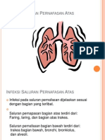 Infeksi Saluran Pernafasan Atas