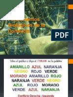 Fundamentos Biológicos de la Conducta.pptx
