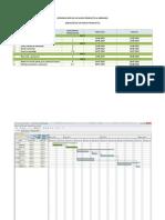 INTRODUCCIÓN DE UN NUEVO PRODUCTO AL MERCADO (creación) (Actividades y plazos de ejecución) - gantt
