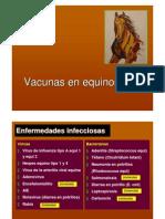 equino vacuna