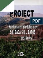 Proiect_Batos[1] Vita de Vie
