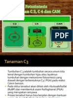 Presentation Biology