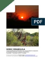 Sonic Mmabolela