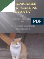 Comunicarile Celor Care Nu Cuvanta-02-Mituk Motanul