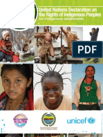 United Nations Declaration on the Rights of Indigenous Peoples - Adolescent-friendly version