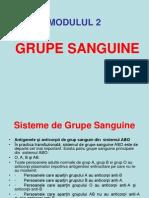 Grupe Sanguine