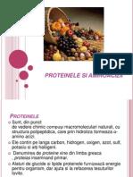 Proteinele Si Aminoacizii