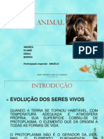 Reino Animal - Revisado