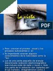 PROCESO_VISION.pptx