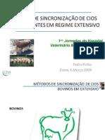 20090331074053 Metodos de Sincronizacao Ruminantes Em Extensivo-Dr. Pedro Pinho