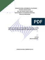 1INFORME DE PRÁCTICA PROFESIONAL CON-PIEDRA (1)