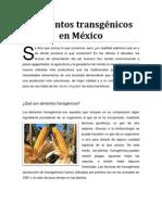 Alimentos transgénicos en México