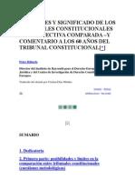 FUNCIONES Y SIGNIFICADO DE LOS TRIBUNALES CONSTITUCIONALES EN PERSPECTIVA COMPARADA.docx