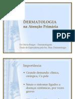 Dermatoses atenção primária 2013 otavio ferreira borges.pptx