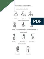 Protocolo Evaluacion Postural
