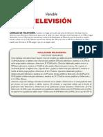 Resumen Ejecutivo Para Politica America PDF