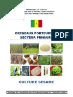 Culture Sesame