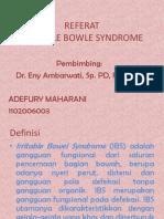 ppt IBS