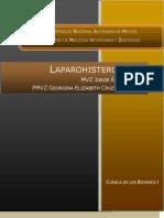 Laparohisterotomia