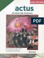 Cactus Hermosos
