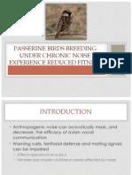 Passerine Bird Breeding