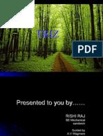 Triz(Rishi Raj)