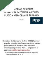 3.MEMORIAS DE CORTA DURACIÓN