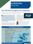 Allianz RP Risk Barometer Jan2013
