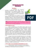Virus+Informaticos.doc01