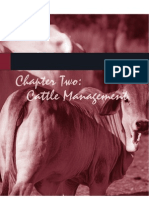 Cattle Management