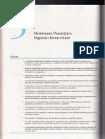 05. Membrana Plasmática. Digestão Intracelular