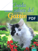 Guida Gattino How to grew up kittens