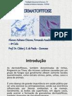 Dermatofitose - Zoonoses