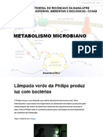 Aula Metabolismo