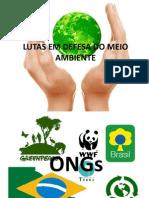 Lutas Em Defesa Do Meio Ambiente