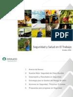 2010 10 08 Valdivia Seguridad Salud en El Trabajo Arauco