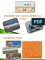 Informe de Caleta Tortuga-paita