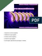 MARCOS ARAUJO.Campo magnetico.pdf