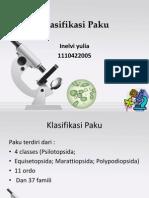 Klasifikasi Paku
