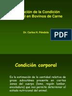 condicion-corporal.ppt
