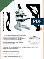 Diapositivas de Biologia 2