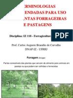 Aula 1 - Terminologias IZ 118