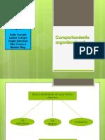 Comportamiento organizacional11.pptx