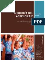 Bases Neurofisiológicas,Aprendizaje y Cerebro