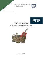 Plan de Afaceri 19.02.2012