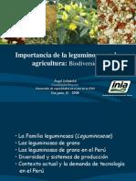 Importancia de La Leguminosas.ica.12.06.08