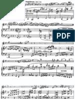 IMSLP04313-Nielsen Op.35 Violin Sonata No.2