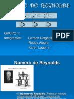 Numero de Reynolds Gdl