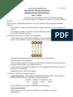 Leyre-tema 3-lípidos.pdf