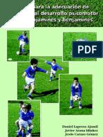 Pautas Para La Adecuacion de Contenidos Al Desarrollo Psicomotor de Prebenjamines y Benjamines